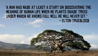 tree quote quotes about trees yourhappyplaceblog