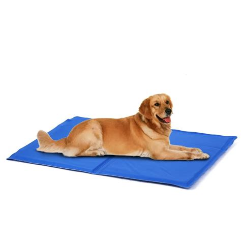 cool bed for dogs gel beds for dogs kh pet products kh cool bed lll blue