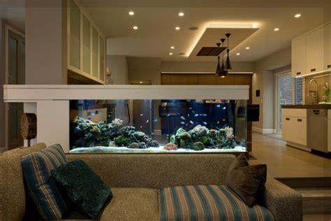 aquarium wohnzimmer aquarium aufstellen und einrichten aquarium fische