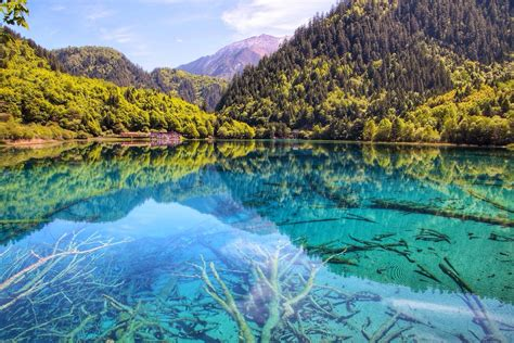 clearest lake in china facts jiuzhai valley national park aba china five flower lake in
