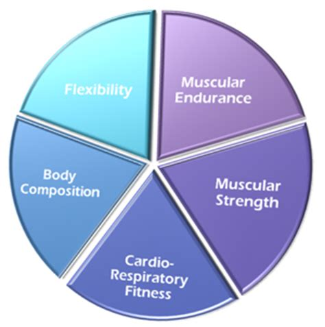 5 components of health related physical fitness daly