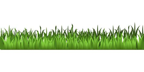 green grass clipart meadow green grass clipart isolated stock photo by nobacks