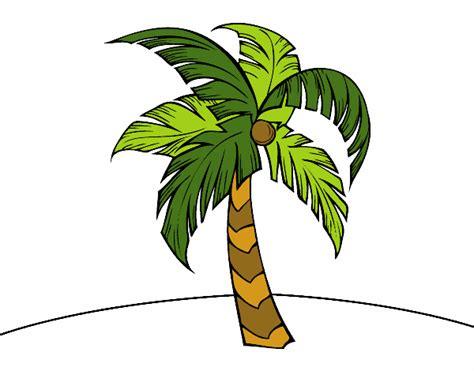 Dessin De Une Palmier Colorie Par Membre Non Inscrit Le 06 Dessin De Palmier A Colorier L