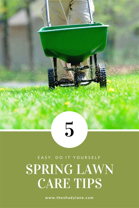 summer lawn care tips diy spring lawn care tips for a beautiful healthy lawn