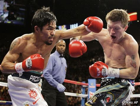 25 best boxing images on athletes marshal arts and mike d antoni