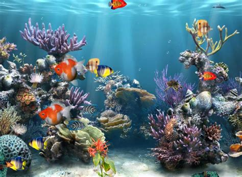 Home Design Software Free Download Full Version For Windows 10 by Coral Reef Adventure Aquarium 3d Screensaver
