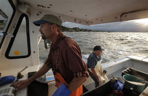 gunwale lobster boat so you want to be a lobsterman the portland press herald