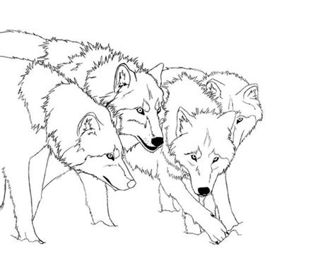 printable heroes wolf wolf coloring pages anime character realistic and art