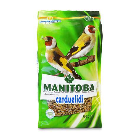 κύρια τροφή manitoba carduelidi premium τροφη για