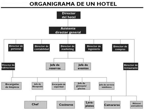 cadenas hoteleras mexicanas pdf how is the organizational chart of a hotel and their