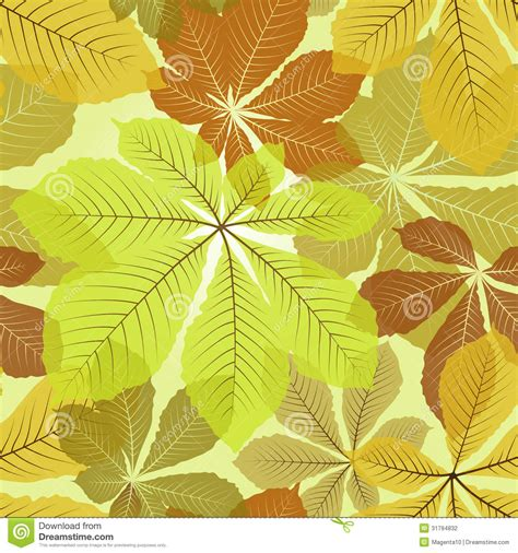 leaves pattern photography leaves patterns stock photography image 31794832