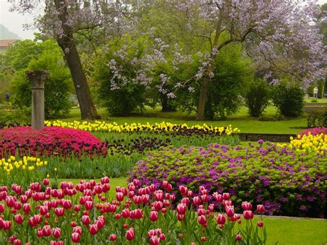 giardini in fiore foto giardini botanici di villa taranto ascona locarno
