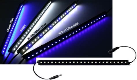 ecoxotic stunner 6 watt 24 leds aquarium light 12 5