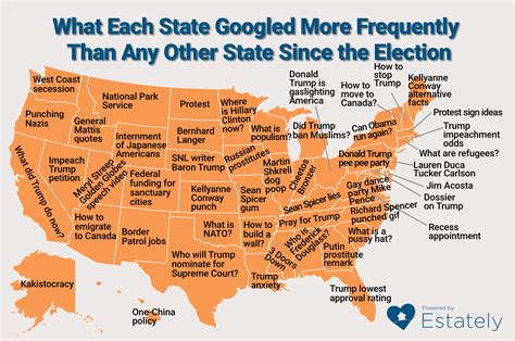most googled how to what each state googled more frequently than any other