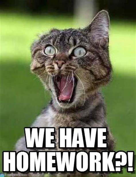 Homework Meme - best 25 homework meme ideas on pinterest funny homework