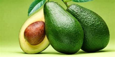 manfaat buah alpukat  kesehatan kecantikan wajah