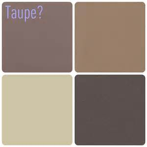 colors that go with taupe paint colors on color palettes living room