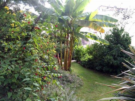 giardino esotico un giardino esotico nel cuore della periferia