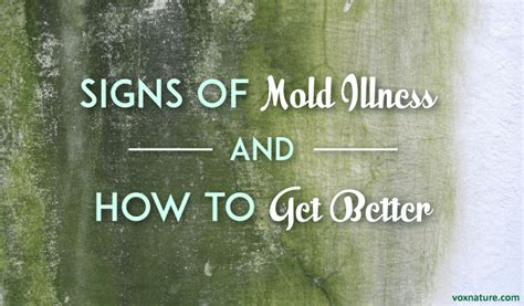 symptoms of mold in house mold in your house symptoms hairstylegalleries com