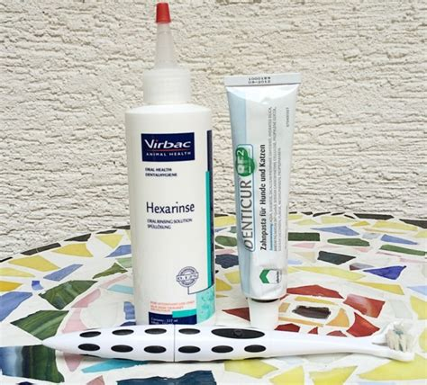 Virbac Shoo Sebazole Animal Health 1 im test virbac animal health enzymatische zahnpasta hexarine sp 252 ll 246 sung platinum