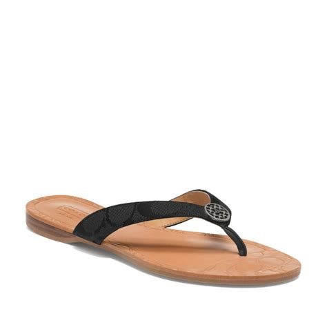 sandals signature coach signature sandal in black lyst