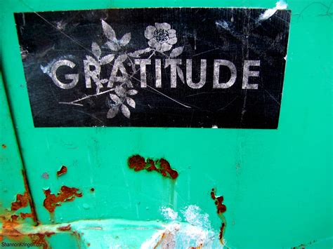 20 Ways to Give Thanks.   elephant journal