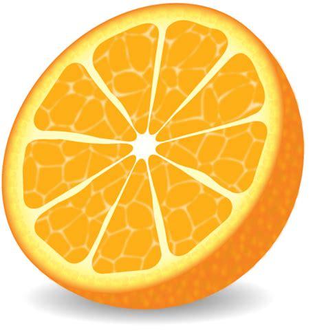 illustrator tutorial orange illustrator orange by alphawolf0019 on deviantart