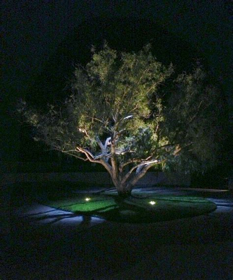 Focus Led Landscape Lighting How To Hire A Landscape Lighting Contractor