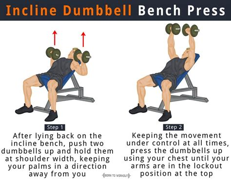 dumbbell bench press muscles worked incline bench press how to do benefits forms muscles