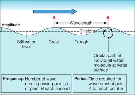 Investigating Oceanography diagram of a wave printable diagram site