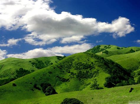 hill background green wallpapers wallpaper cave