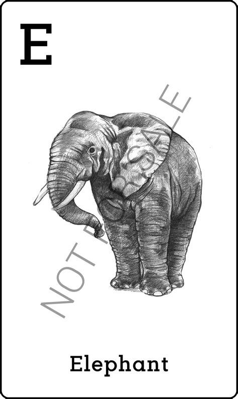 Free Ongkir Sd 30 April 2016 animal 4d dan octaland 4d gratis free