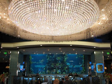 chart house las vegas chart house aquarium at golden nugget hotel casino in las vegas lobby view 187 united