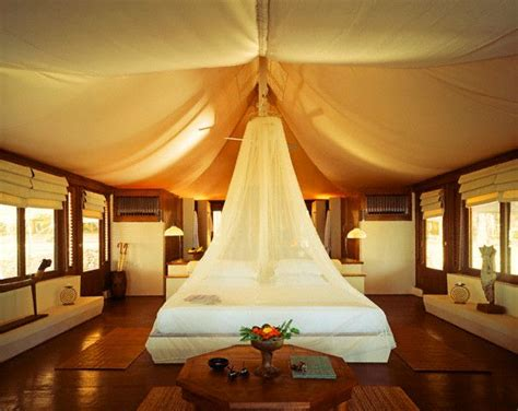safari bedroom ideas for adults 107 best images about safari adult bedroom on pinterest