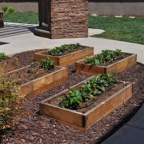 Is It Time To Plant Your Vegetable Garden Mccabe S Time Vegetable Garden