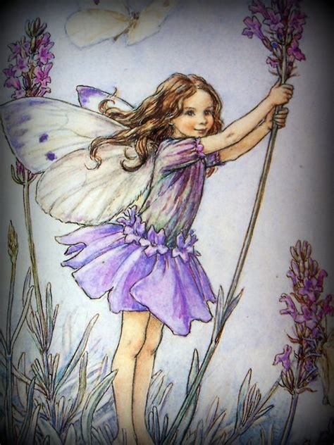 fate dei fiori cicely barker lavender by cicely barker fairies