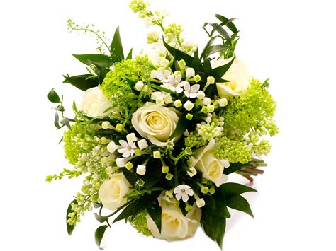 Wedding Flower by Viewing Gallery For Green Flowers Bouquet Floral