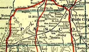 pasco county 1917