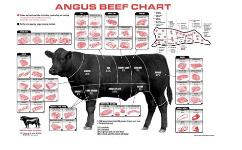 cow cuts diagram beef cuts farmers market