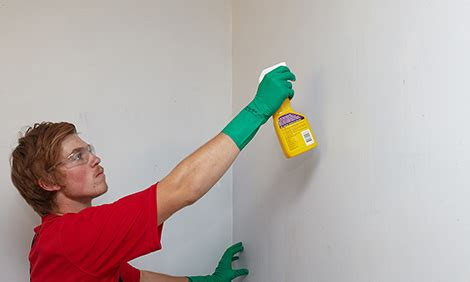 cleaning bathroom walls how to clean walls with sugar soap bunnings warehouse nz