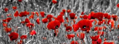 remembrance poppies facebook cover timeline holiday