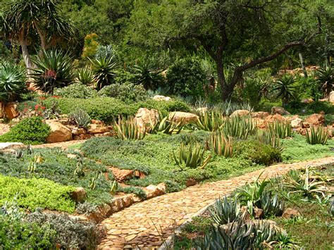 Walter Sisulu National Botanical Garden 10 Of The Best Green Spaces And Parks In Johannesburg How South Africa
