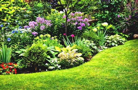 Simple Flower Garden Ideas Full Sun For Your Back Yard Simple Flower Gardens