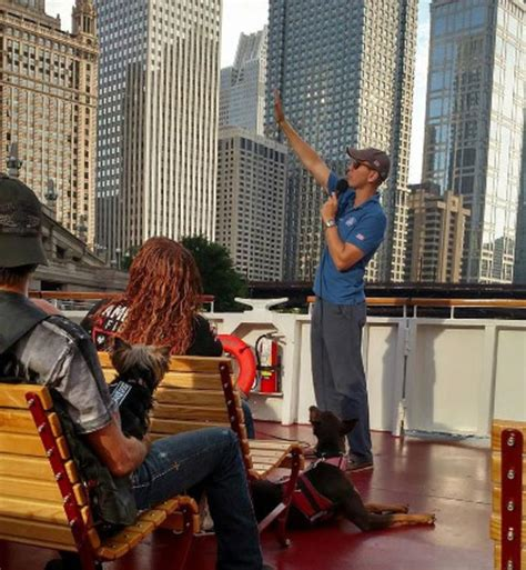 chicago boat tour with dog chicago boat tours find guided tours cruises of
