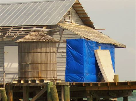 the fish house sanibel 17 best images about fishing on pinterest fishing