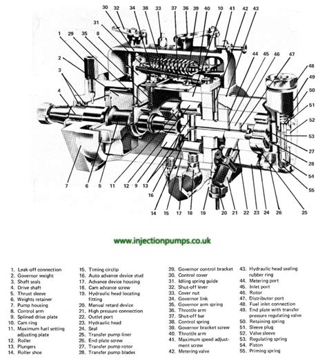 cav injector diagram exploded diagrams diesel injection pumps