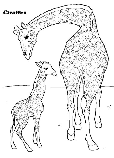 giraffe family coloring pages giraffe and baby coloring page coloring book