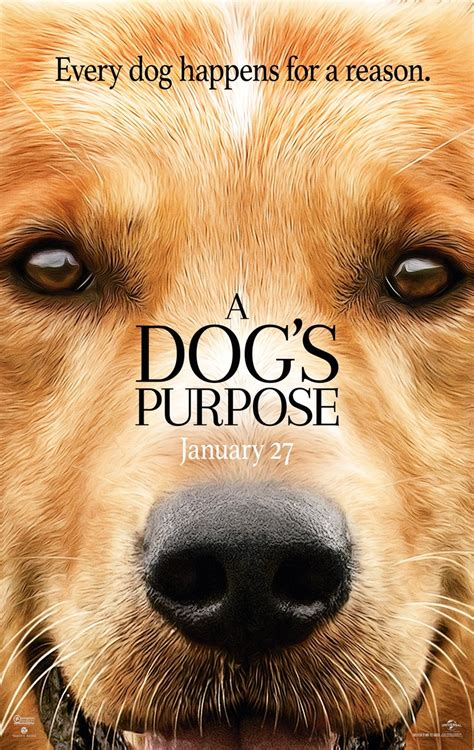 a s purpose dvd a s purpose dvd release date may 2 2017
