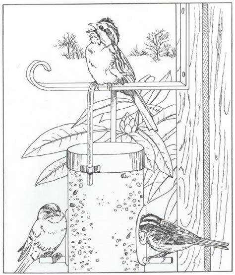 coloring page bird feeder gardening color page coloring pages of bird feeders