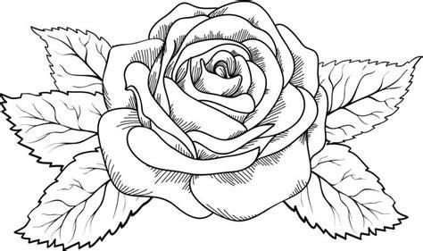 imagenes para pintar de flores dibujos de flores para imprimir y pintar vix